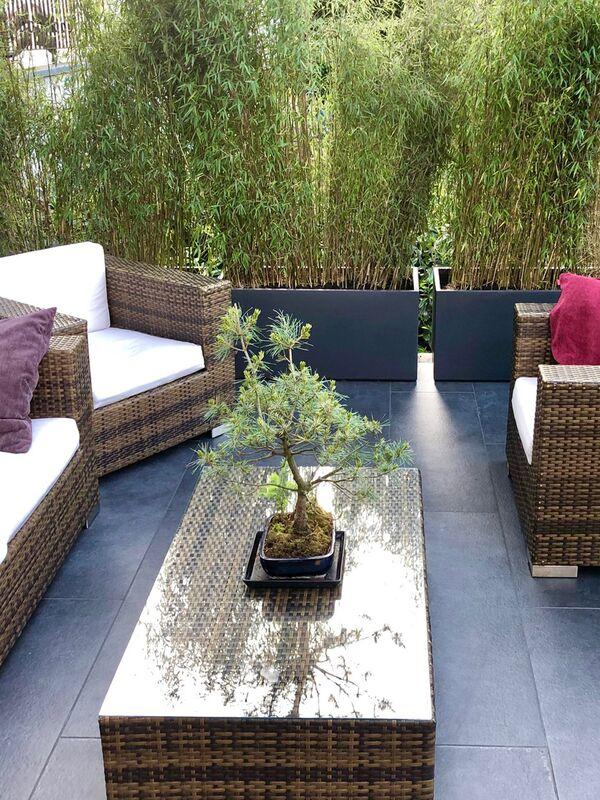 Pflanzkübel für Bambus